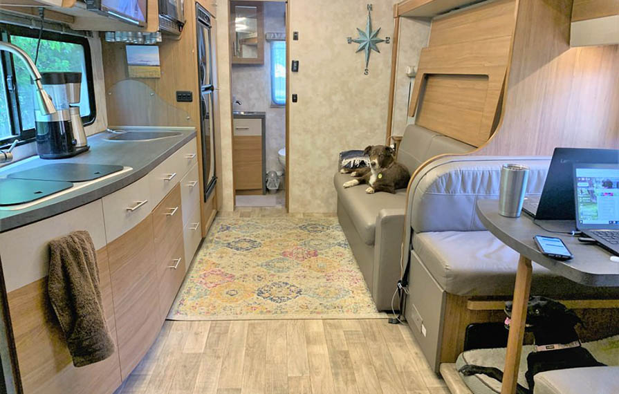 Interior of Winnebago Navion. Brown and white dog is sitting on sofa