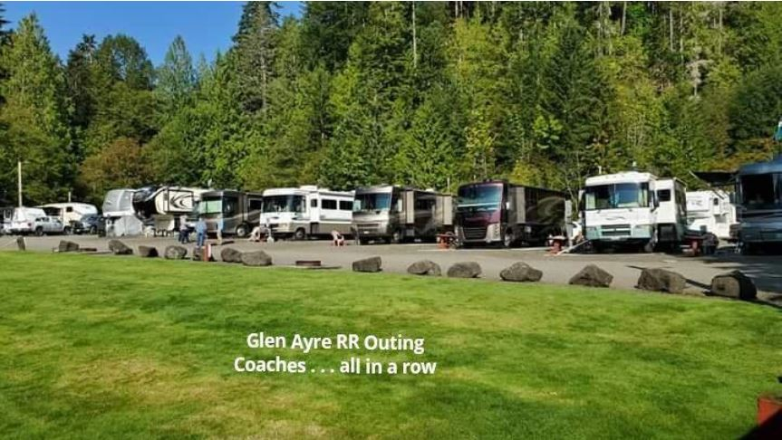 Row of RVs parked along tree lined campground.