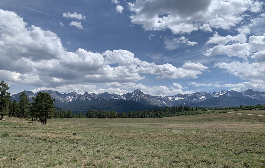 Green grass and mountains of the Rocky Mountain National Park