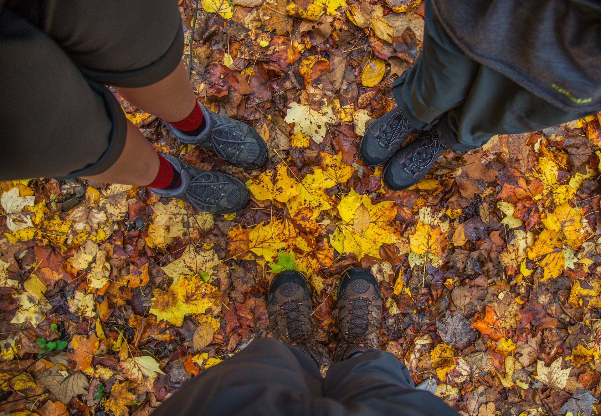 View of 3 people's feet standing on many fallen leaves.