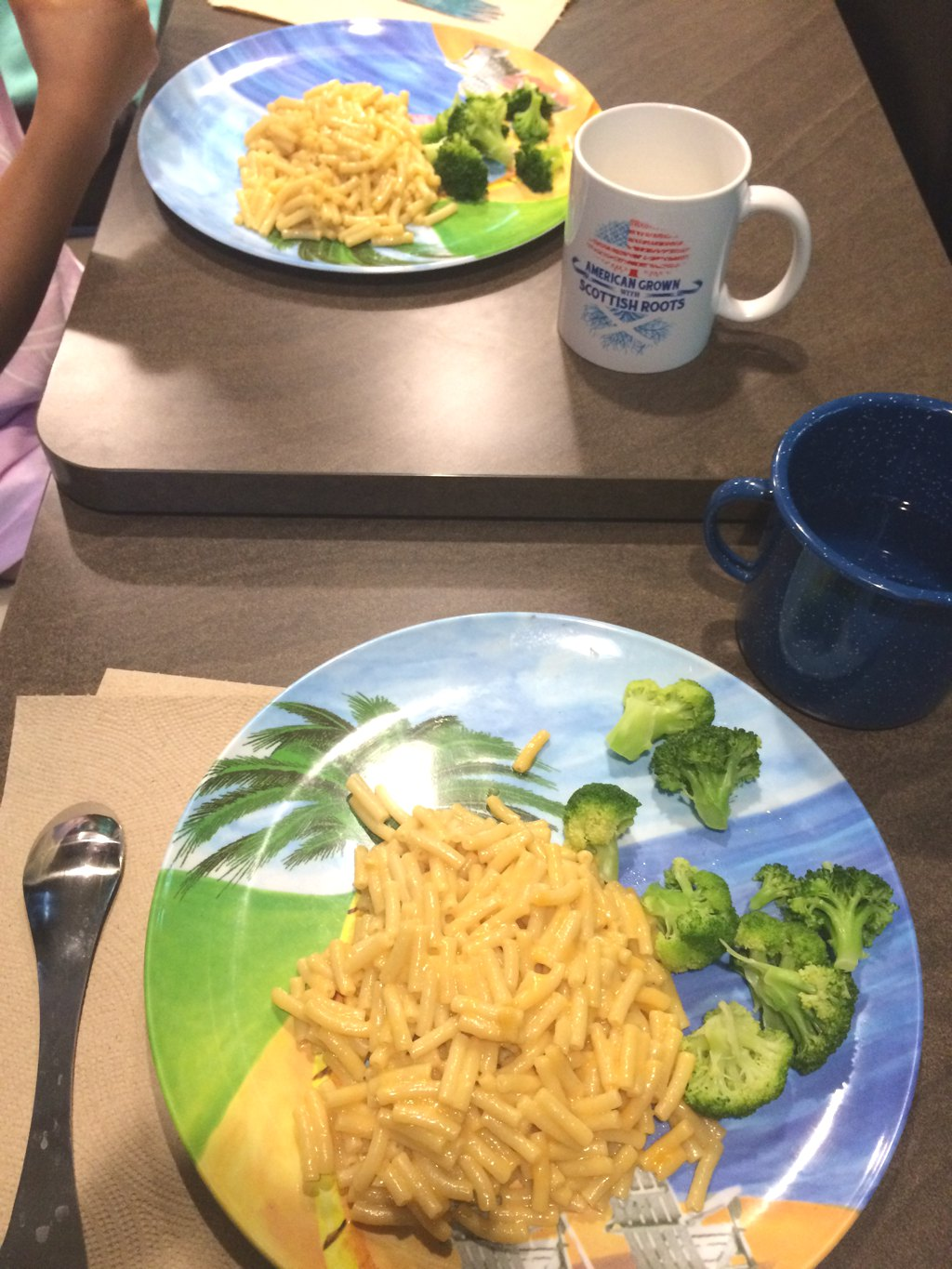 Mac and cheese and broccoli meal.