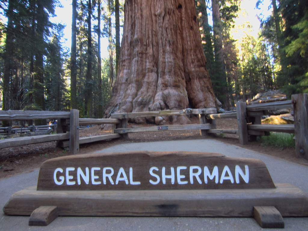 Sign for General Sherman at the base of the 2,000 year old sequoia.