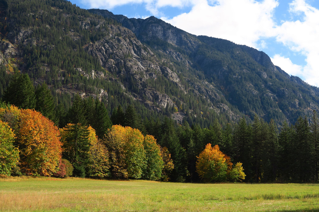 Tree covered hillsides of the North Cascades.