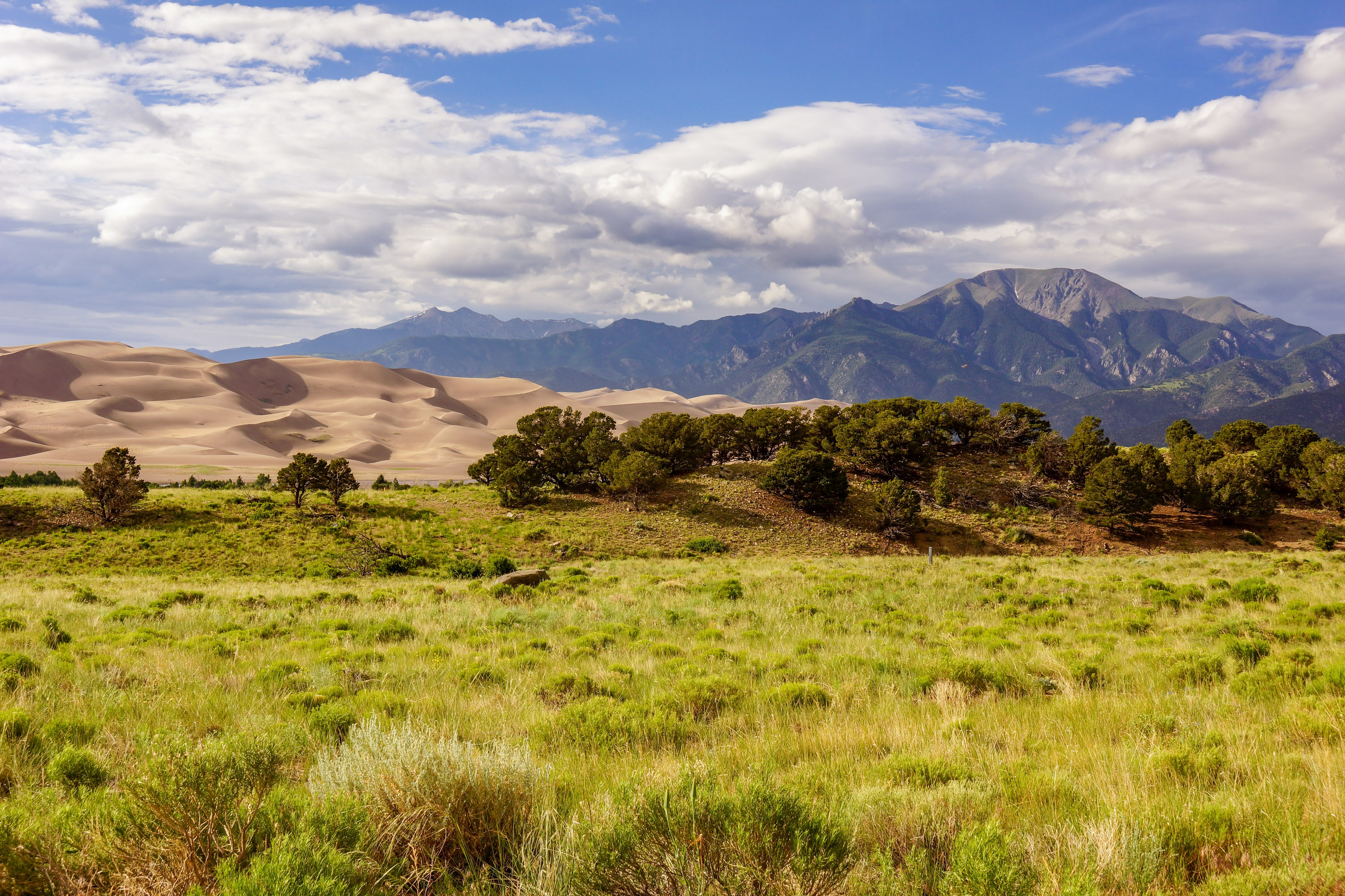 Grassy field that leads into sand dunes, then up to mountains.