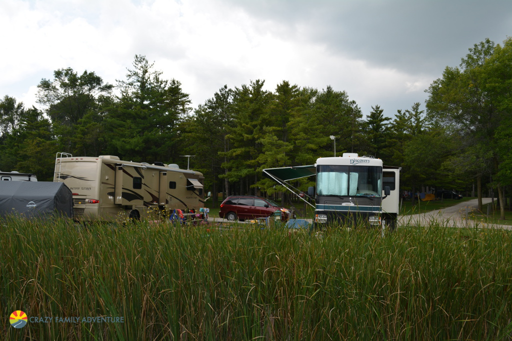 Motorhomes parked at a campground.