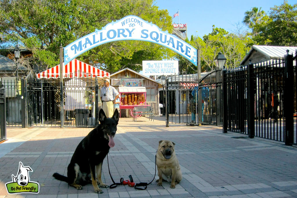 Two dogs sitting in front of sign for Mallory Square.