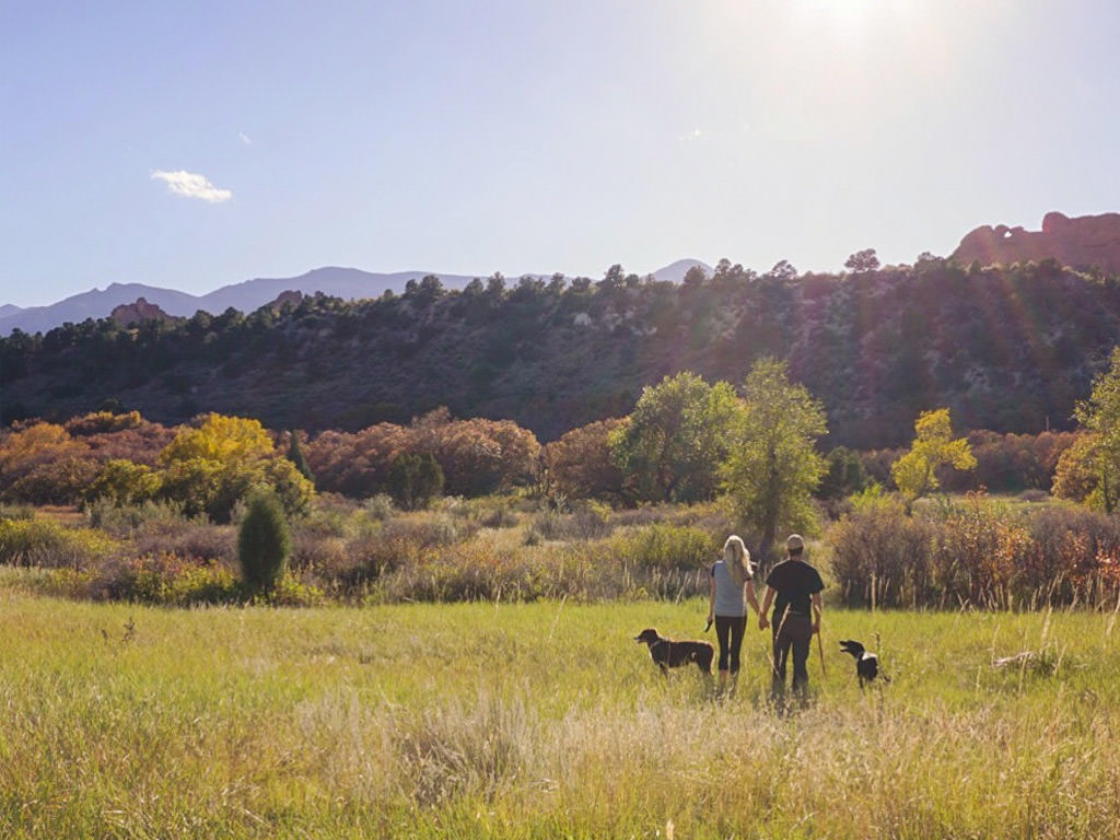 Couple and two dogs standing in tall grass with mountains in the distance.