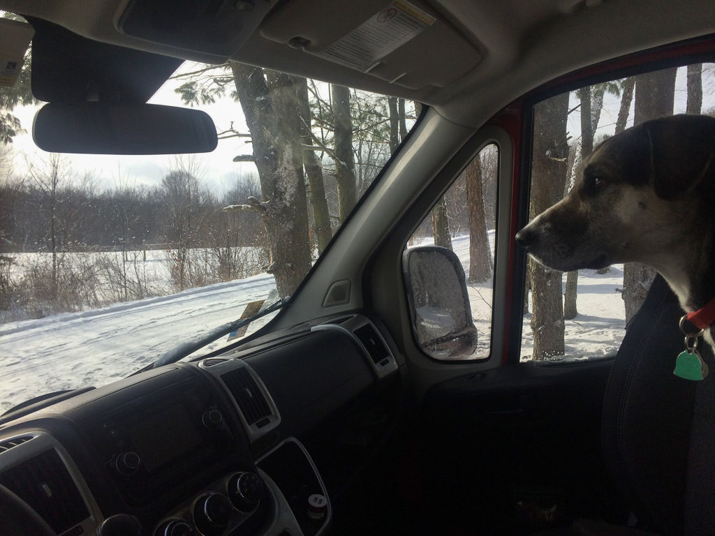 Dog sitting in passenger seat of the RV with wintry view out the window