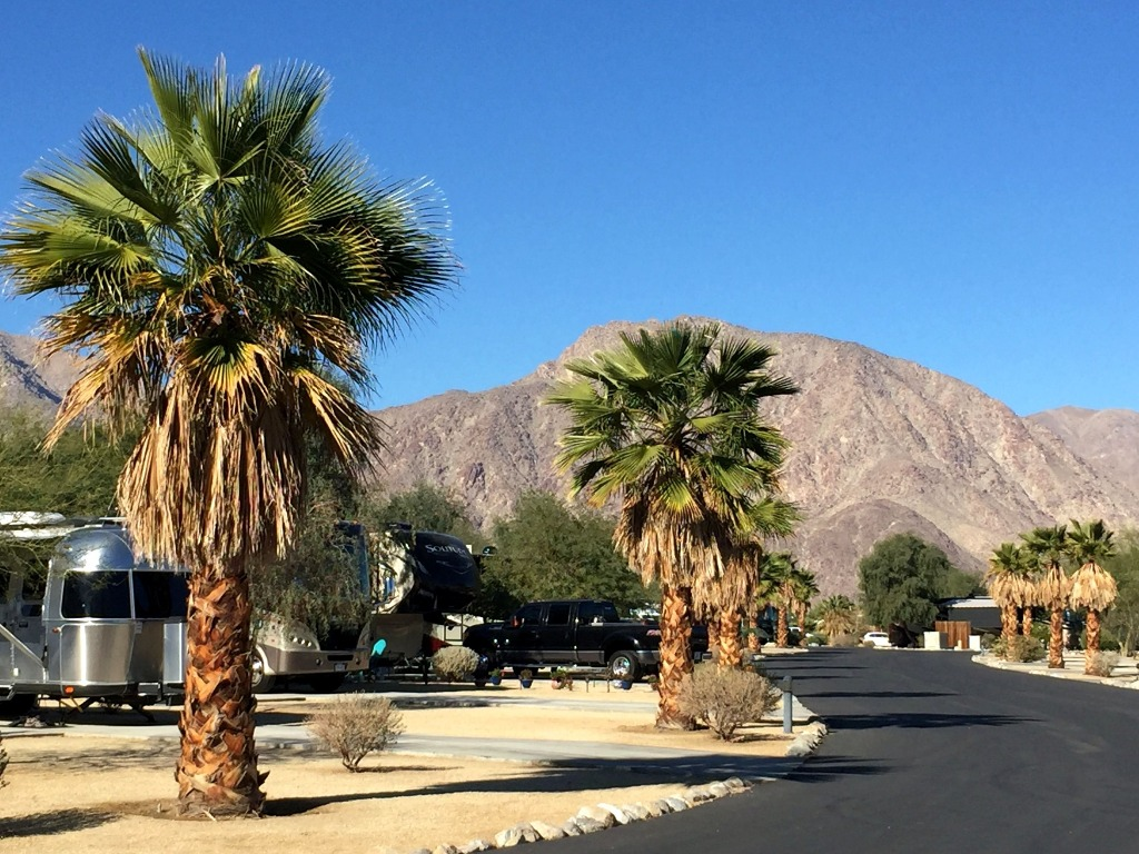 Motorhomes parked at Borrego RV Park with palm trees and moutains