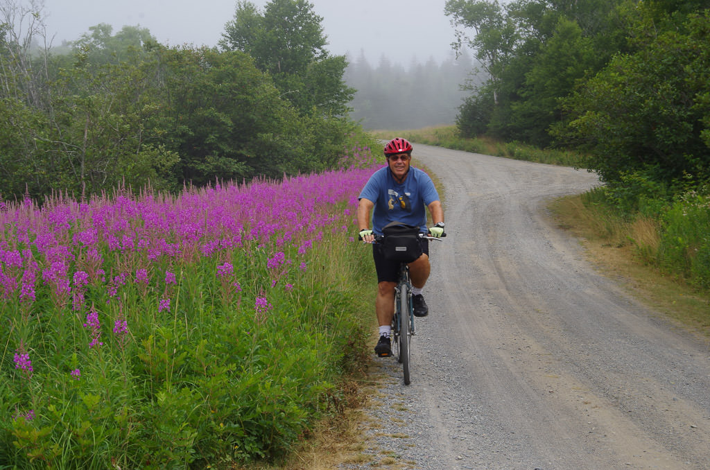 Man riding a bike along a path with purple flowers to the left and trees to the right