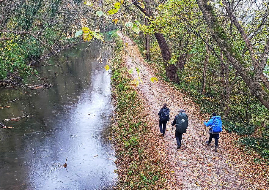 Three people hiking on a trail along a river