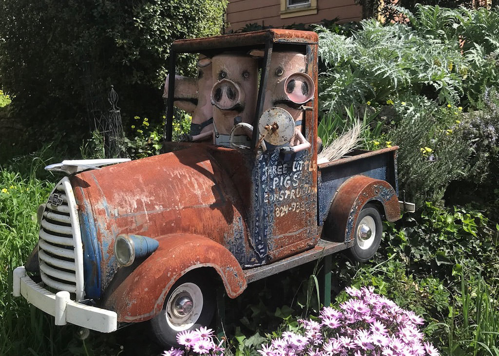 """Junk art"" old truck with three pigs in the cab."