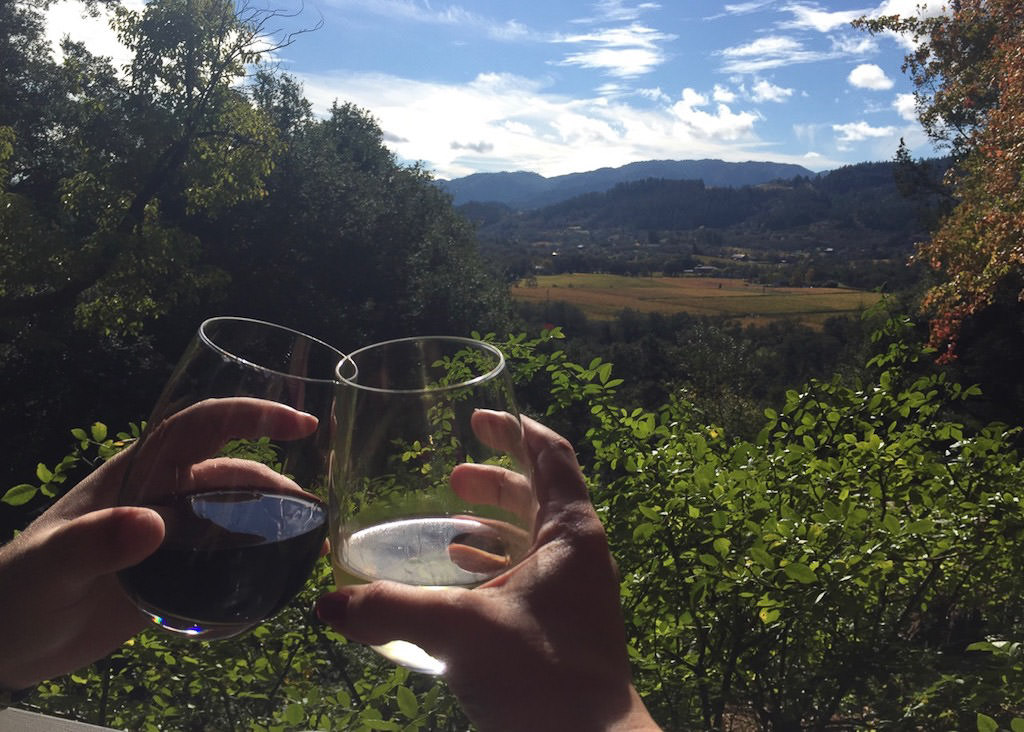 Wine glasses with view of Napa Valley through the trees.