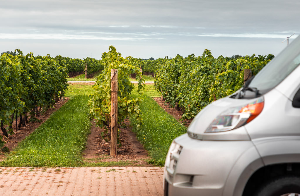 Front of an RV with view of rows of grapevines.