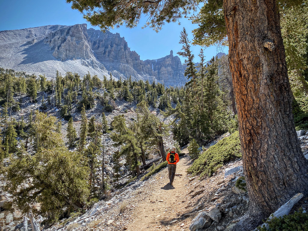 Man hiking along a path in Great Basin. Trees and mountains surround.